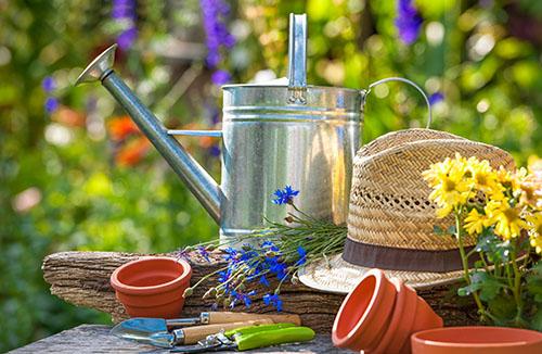 Photo de jardin avec arrosoir, chapeau, petits pot en terre cuite