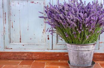 Bouquet lavande décor rustique