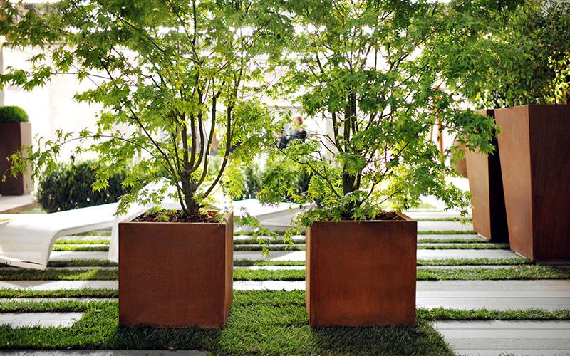 Arbre en pot pour décorer son jardin
